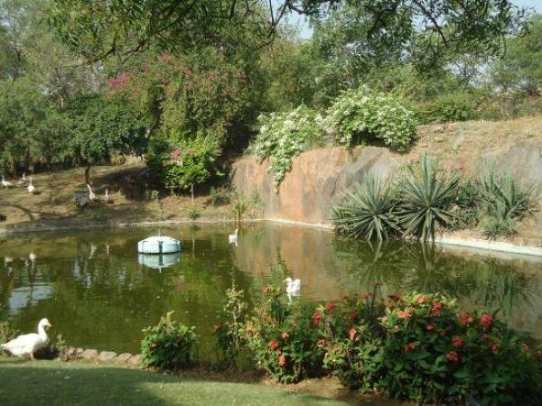 buddha garden in dhaula kuan - Buddha Garden